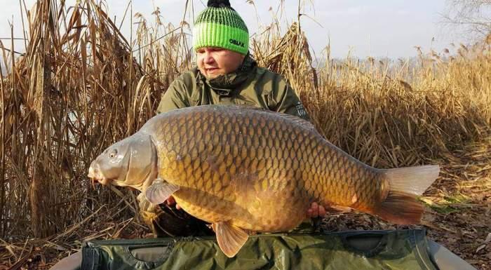 Словенский рыбак поймал карпа весом 34 кг