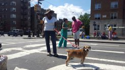 Local resident Joyce Hogi struts fashion and her dog on the Concourse at Boogie on the Boulevard this past Sunday, August 9th