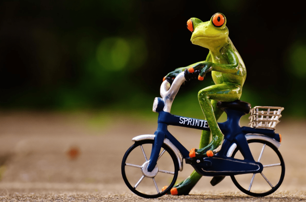 Small frog riding mini bicycle