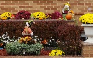 The Beauty of Seasonal Decorating