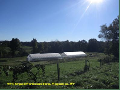 WVU Training Farm