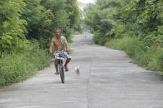 """""""Man and Dog"""""""