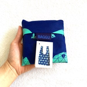 Standard Baggu, all folded up into its square pouch.