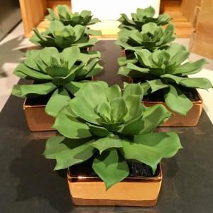 cb2 faux fake succulent plant arrangement. 7 shown in a short copper-colored planter.