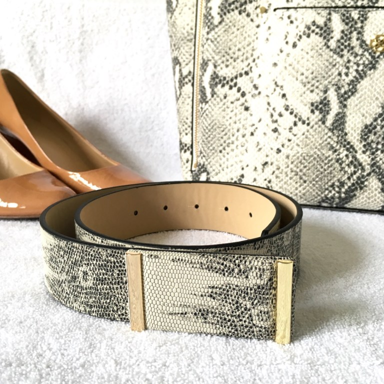 A snakeskin patterend belt in the front, with shoes and a matching bag in the background.