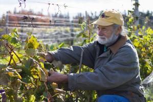 John Rossignol of Rossignol Winery Estate