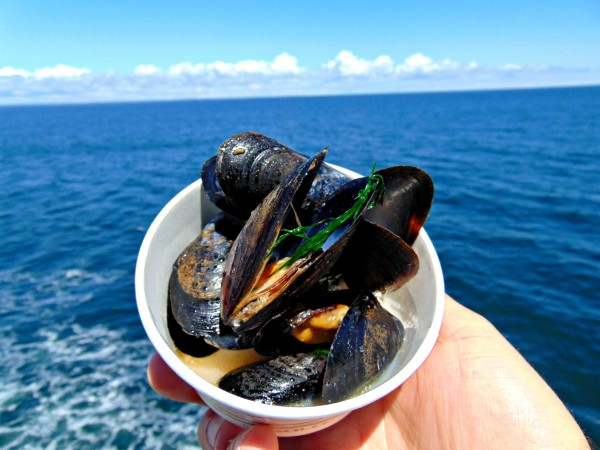 Mussels on the ferry, Prince Edward Island
