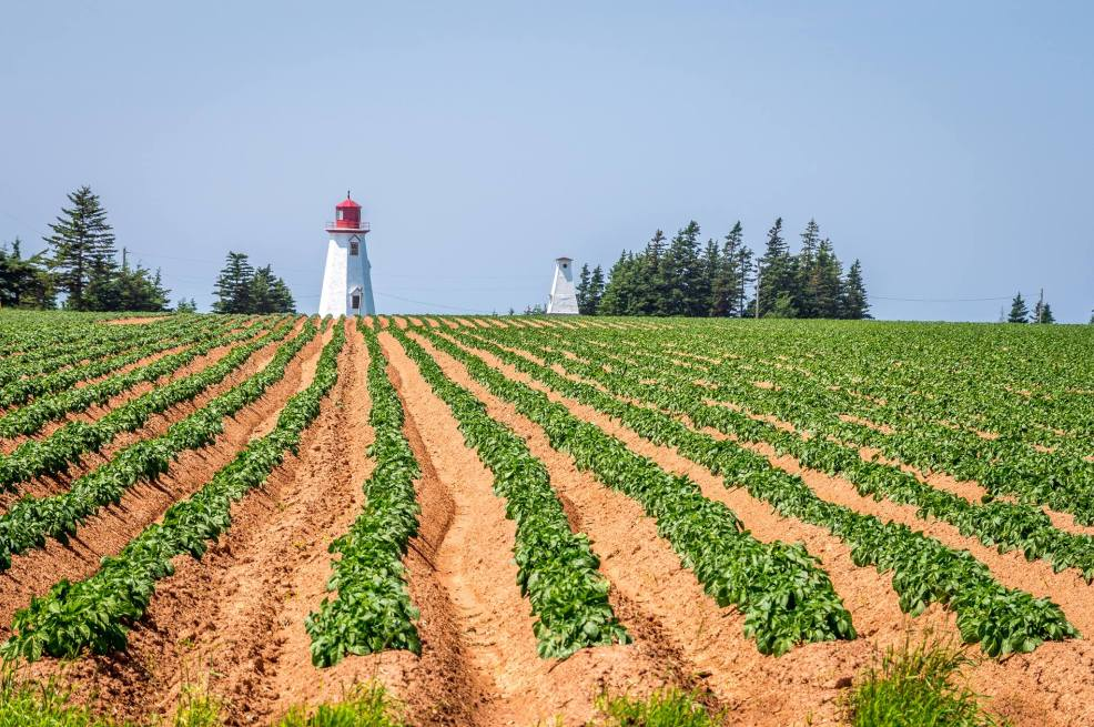 Seacow Head Lighthouse, PEI