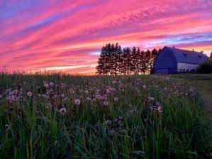 Barn and Beautiful Sky in Rural PEI