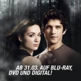 Tenn_Wolf_DVD