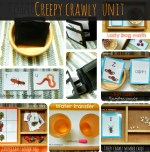 Creepy Crawly Unit: Montessori inspired bug activities