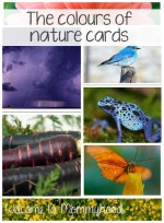 The colours of nature cards