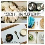 August practical life activities