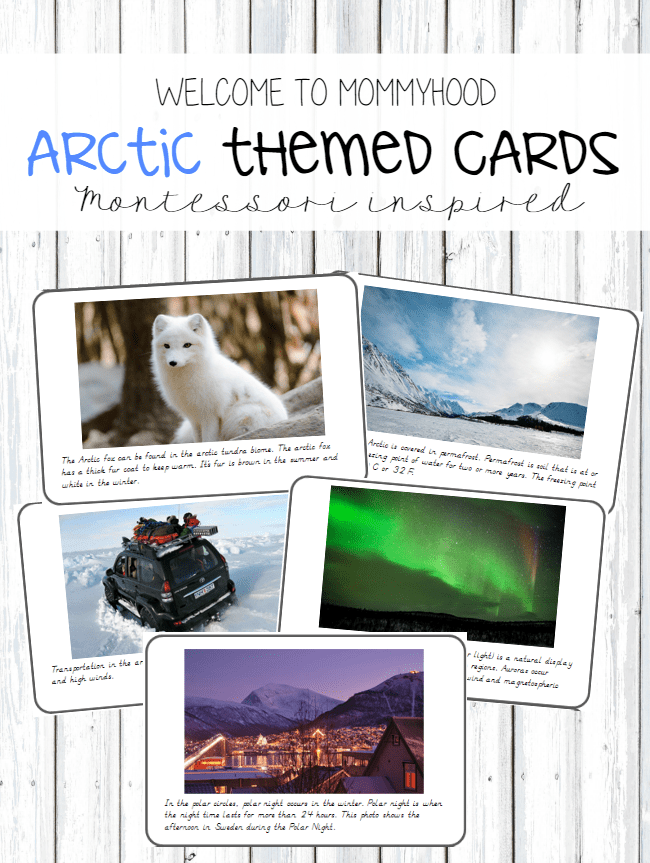 Arctic themed cards