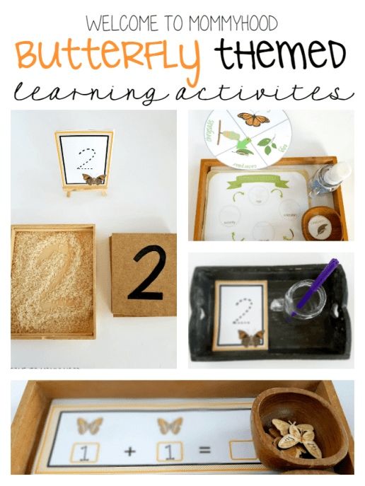 Hands on butterfly themed learning activities #montessori
