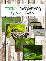 Insect activities for preschoolers: insect magnifying glass cards
