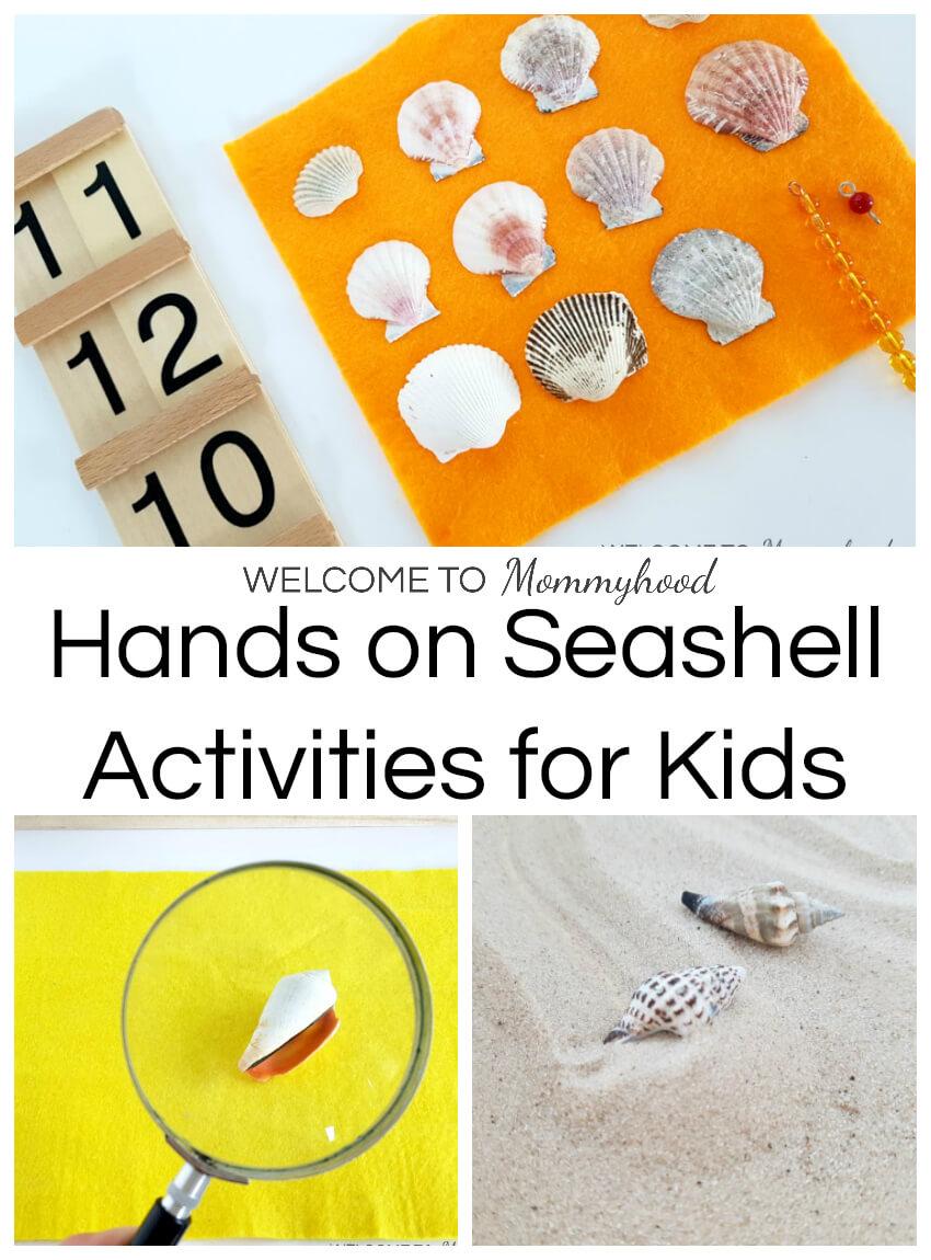 Seashell activities for kids: Montessori inspired seashell activities for preschoolers #seashellactivities #montessoriactivities #preschoolactivities