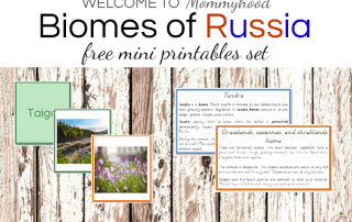 Montessori Russia Unit Study Printables #montessoriactivities