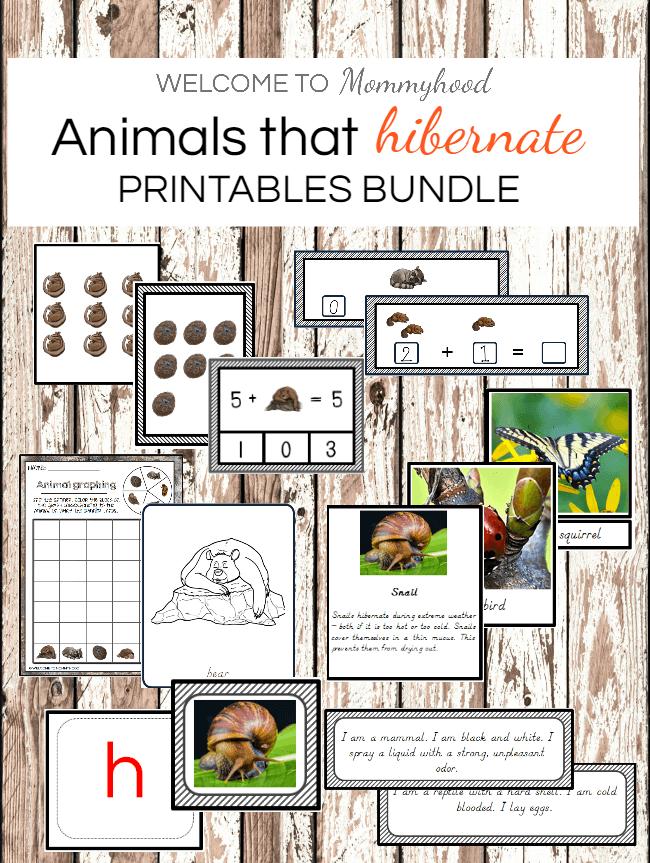 Animals that hibernate bundle