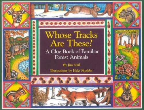 Books about the forest #booksforkids #preschoolactivities #forestbooks