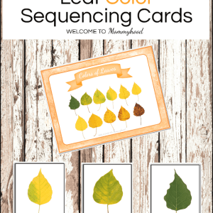 Fall Shades of Leaves Printables Cards
