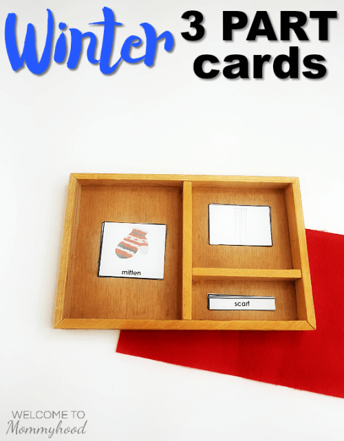 Montessori Winter 3 Part Cards