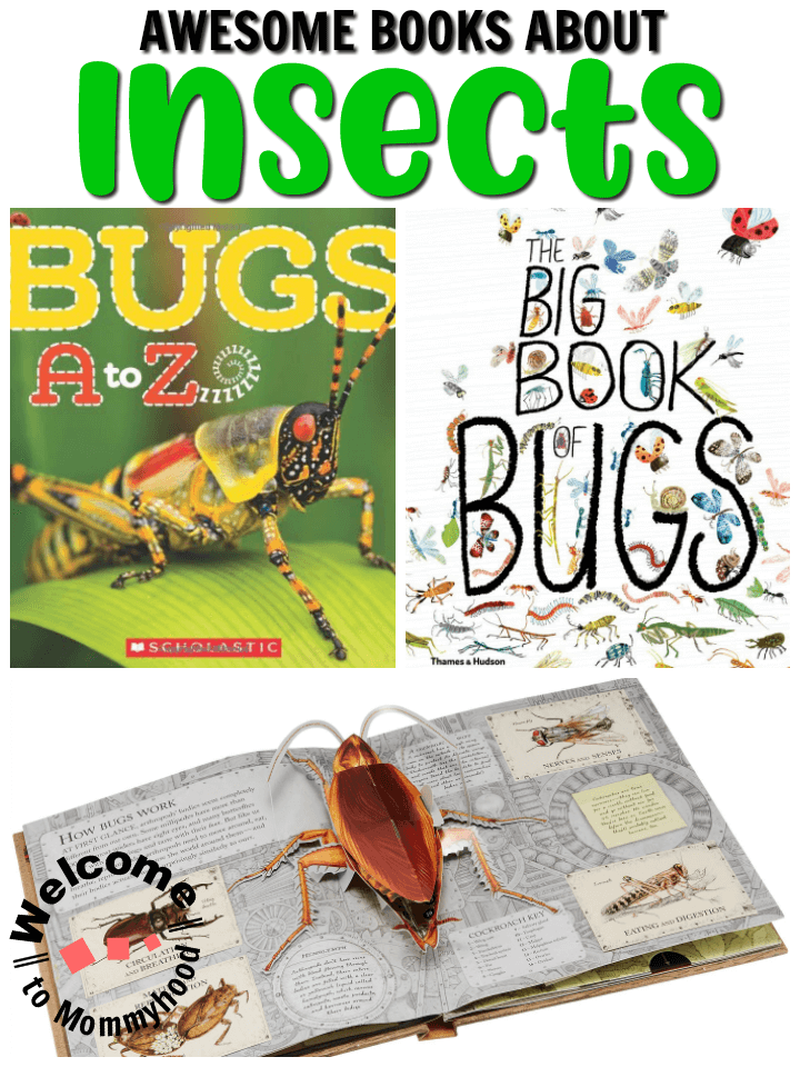 Discover these amazing insect-themed books that kids will just adore reading! Books about bugs are perfect for spring activities and are great for getting children excited about learning! These are perfect for a Montessori classroom, homeschool, preschool or kindergarten classroom!