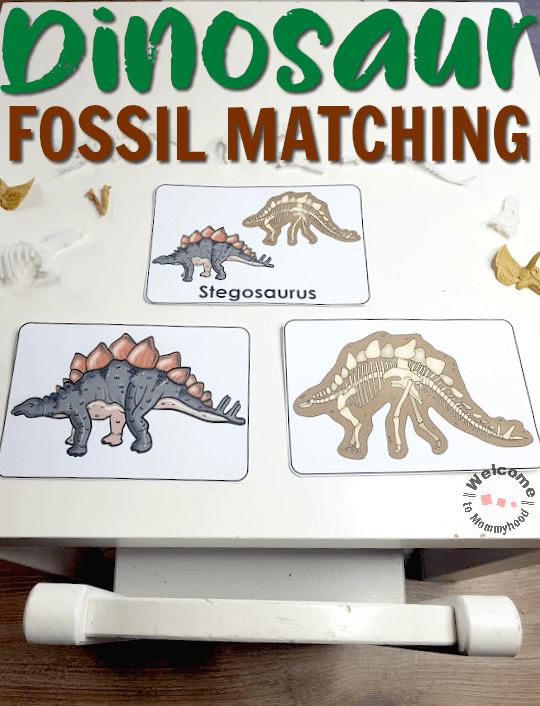 Dinosaur Activities - fossil matching for kids