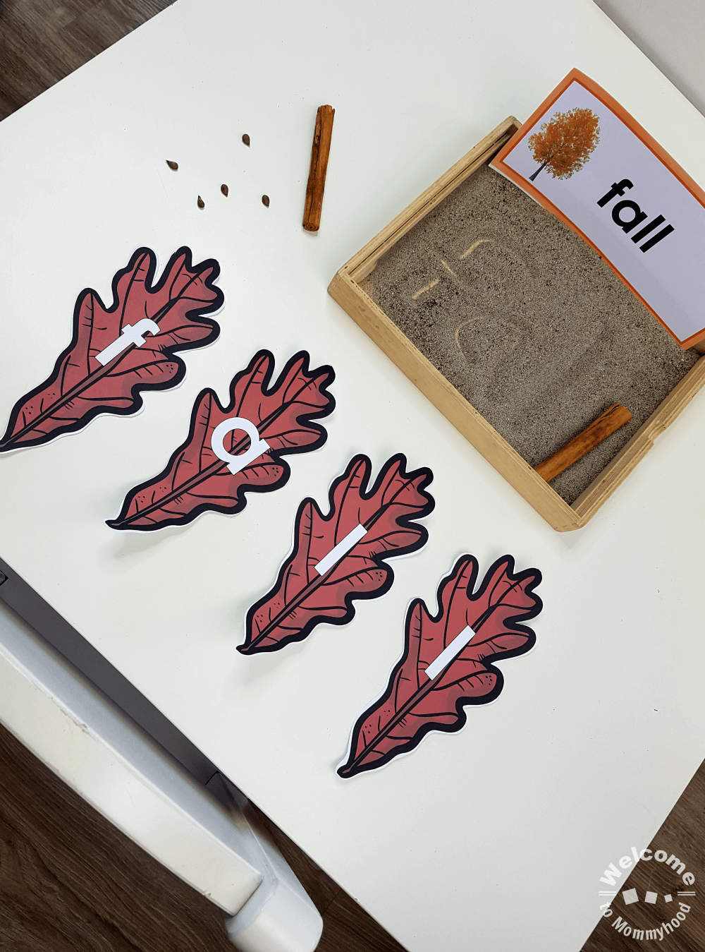 Use these leaf letter cards to create hands-on learning activities for kids. These are perfect for a preschool, kindergarten, or Montessori classroom.