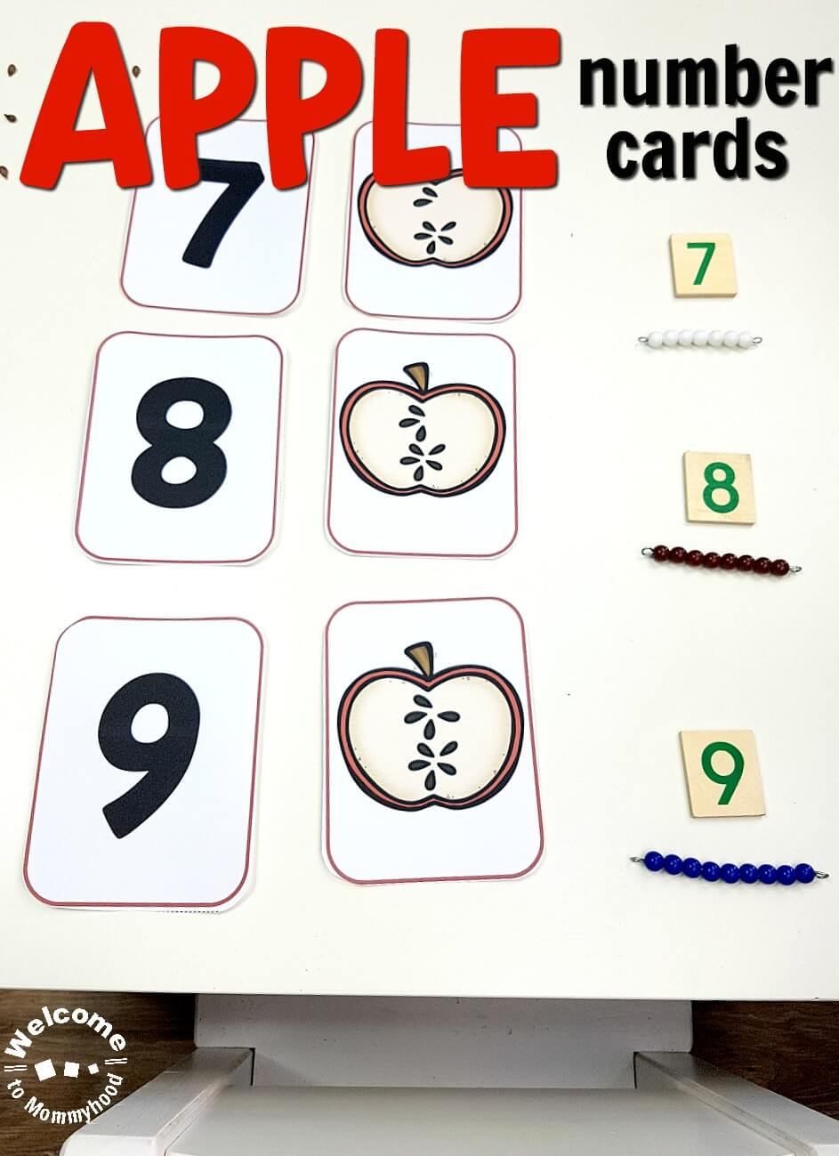 apple number cards for math centers or montessori activities
