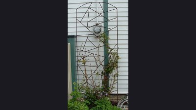 Trellis - 10 ft tall