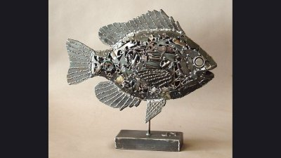 Panfish - 22 in wide