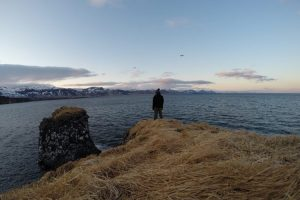 Arnarstapi zee