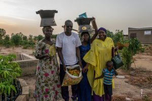 Senegalese family showing the pepper harvest