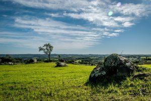 Green landscape in Rio Grande de Sul