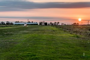 Plane ready for take off on a grass airstrip during sunrise