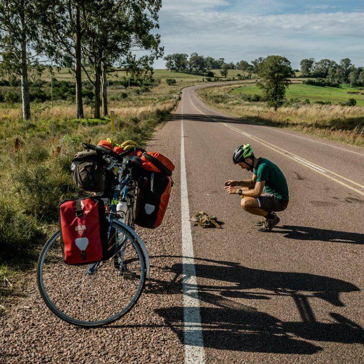 beroep waarbij je veel reist roadkill projects Adventure Scientists