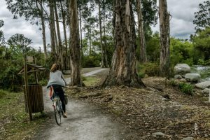 Cycling in cuenca