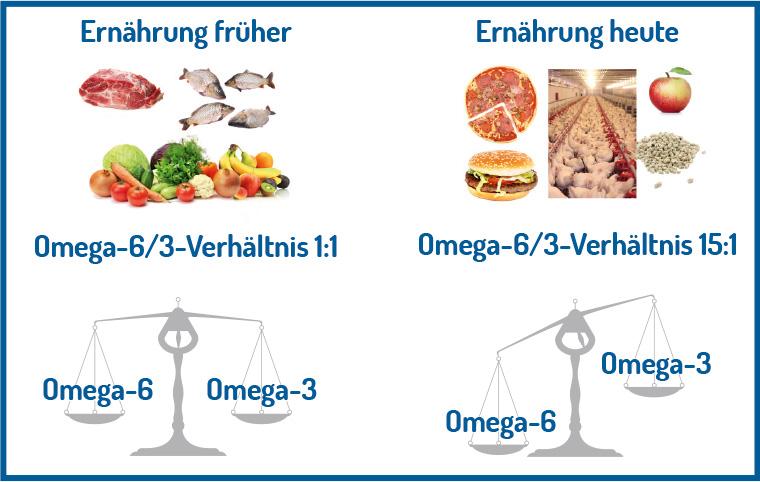 Verhältnissen von Omega-6 zu Omega-3