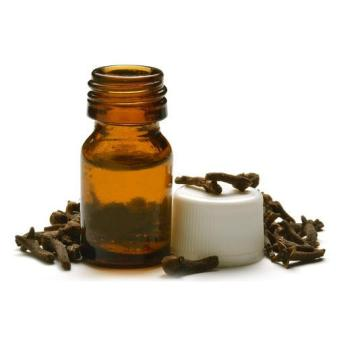 How to Use Essential Oil to Get Rid Of Ants Naturally