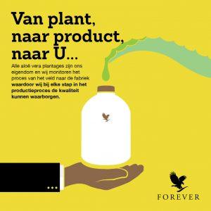 Van plant naar product naar u