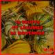 image d'illustration d'une séléection de fruits et légumes du mois de novembre