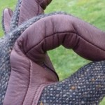This years gloves, by SEH Kelly