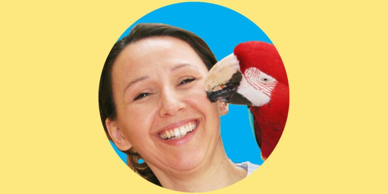 Wellensittiche Blog Podcast Teil 1 Ann Castro Slider