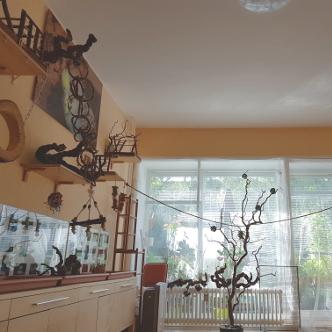 Wellensittiche Blog Produktempfehlungen Vogelzimmer