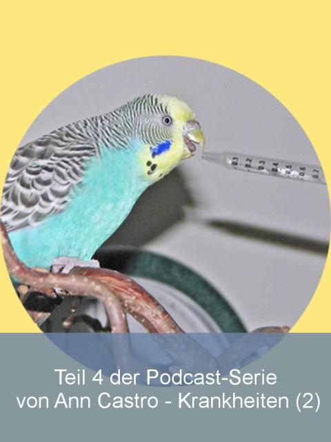 wellensittiche-blog-krankheiten-2-podcast-ann-castro-wencke-sabrina-schacht-teaser