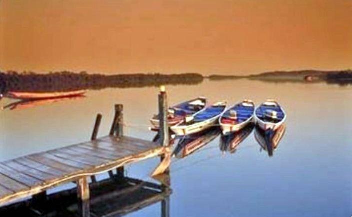 Vissersboten te Gambia-Marianne Schouten