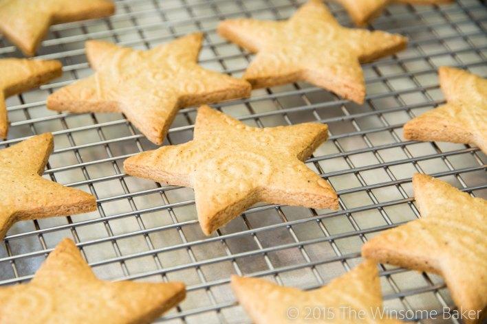Christmas Stars-8