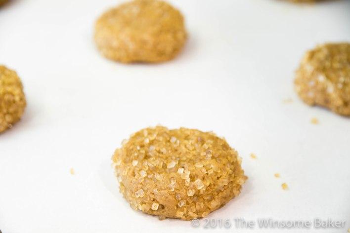 Gingernuts -7