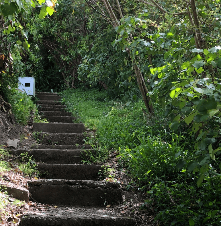 Screen Shot 2020-01-01 at 2.56.21 PM
